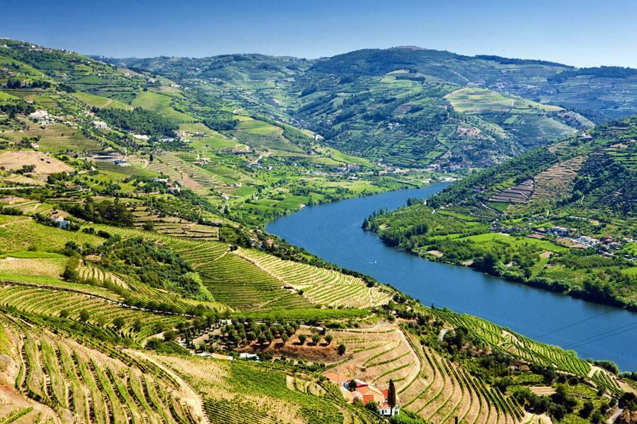 ¿Quieres estudiar o trabajar en Portugal? Abren proceso de postulación a Working Holiday