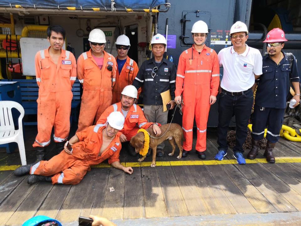 El perro junto a los trabajadores que lo cuidaron